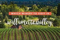 Best Wineries in Willamette Valley
